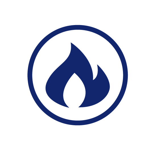 Flame in a circle icon